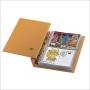 Safe Compact-Album Farbe beige Nr. 7884 für FDC's und Briefe.