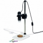 Leuchtturm USB-Digital-Mikroskop DM4 inkl. Stativ Nr. 354396