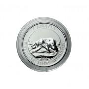 Lindner Münzkapsel für 1 1/2 Unzen Polar Bear Nr. S2255384 per