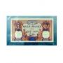 Banknoten-Schutzhüllen Format 270x157mm per 100 Stück